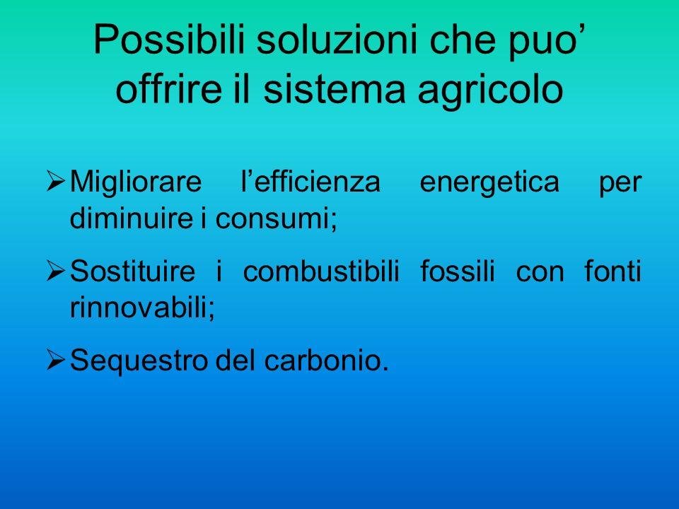 Possibili soluzioni che puo offrire il sistema agricolo Migliorare lefficienza energetica per diminuire i consumi; Sostituire i combustibili fossili con fonti rinnovabili; Sequestro del carbonio.