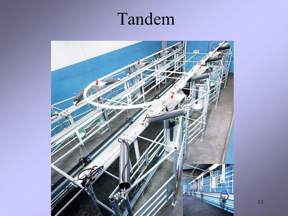 13 Tandem