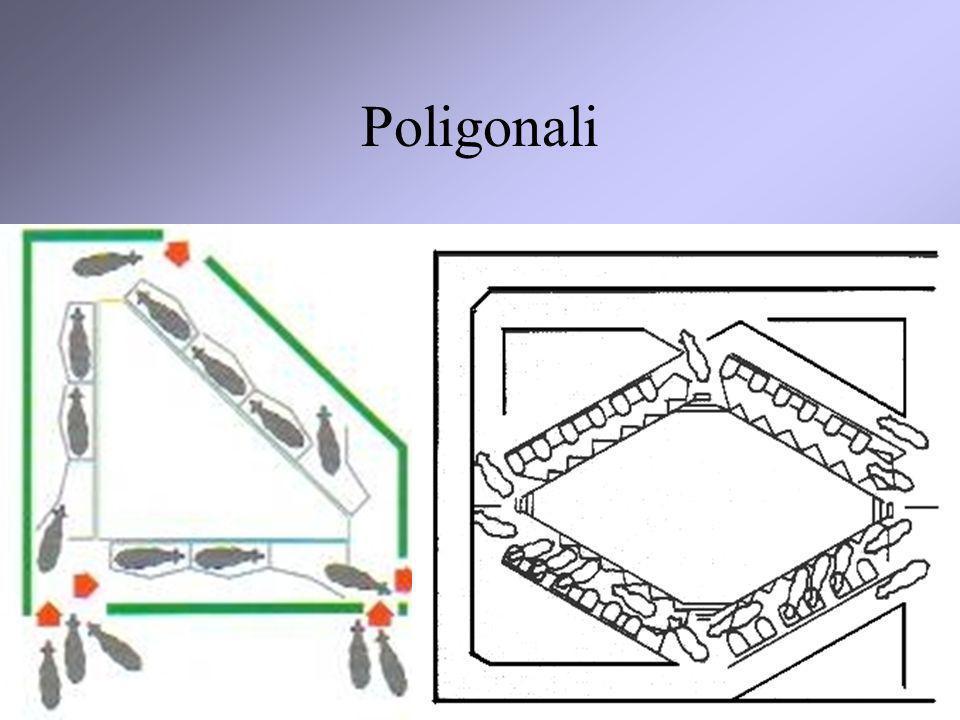 14 Poligonali