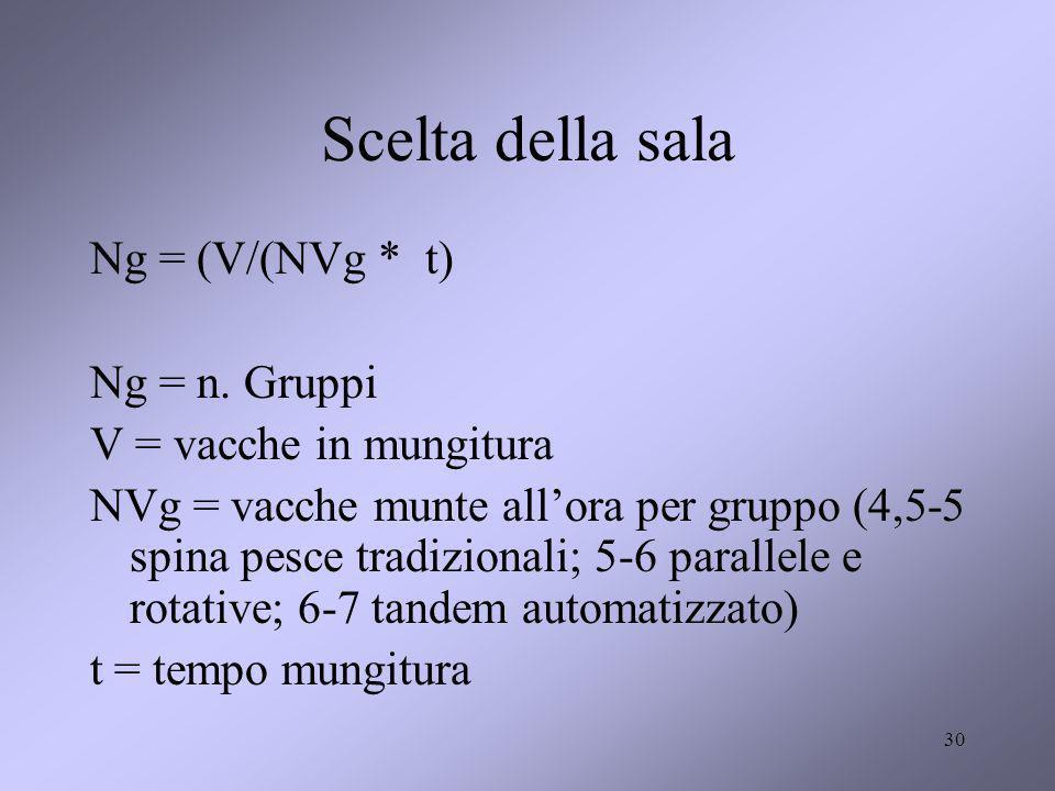30 Scelta della sala Ng = (V/(NVg * t) Ng = n. Gruppi V = vacche in mungitura NVg = vacche munte allora per gruppo (4,5-5 spina pesce tradizionali; 5-