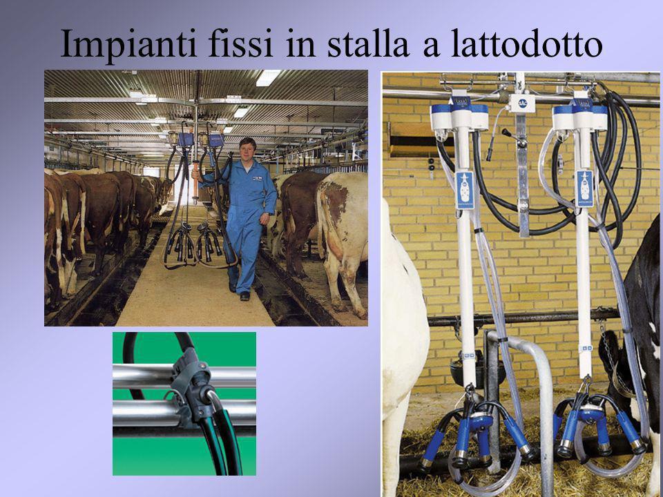 9 Impianti fissi in stalla a lattodotto