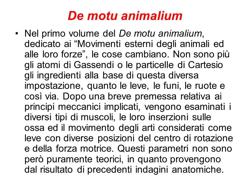 De motu animalium Nel primo volume del De motu animalium, dedicato ai Movimenti esterni degli animali ed alle loro forze, le cose cambiano. Non sono p