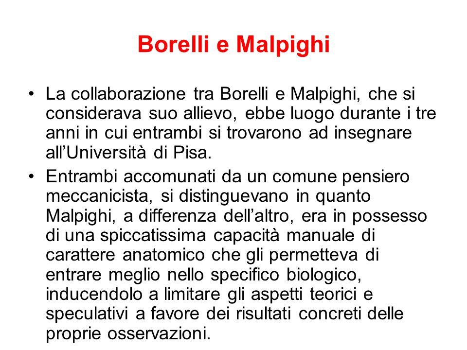 Borelli e Malpighi La collaborazione tra Borelli e Malpighi, che si considerava suo allievo, ebbe luogo durante i tre anni in cui entrambi si trovaron