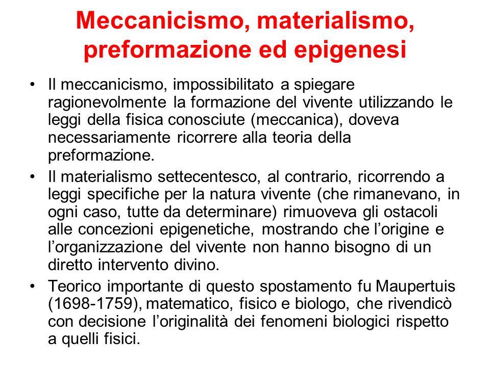Meccanicismo, materialismo, preformazione ed epigenesi Il meccanicismo, impossibilitato a spiegare ragionevolmente la formazione del vivente utilizzan