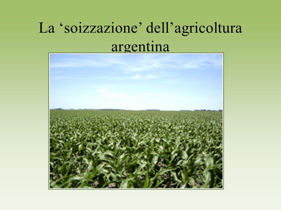 La soizzazione dellagricoltura argentina