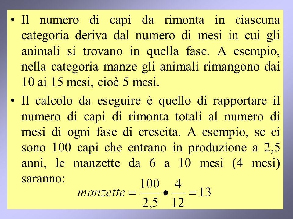 9 Il numero di capi da rimonta in ciascuna categoria deriva dal numero di mesi in cui gli animali si trovano in quella fase.