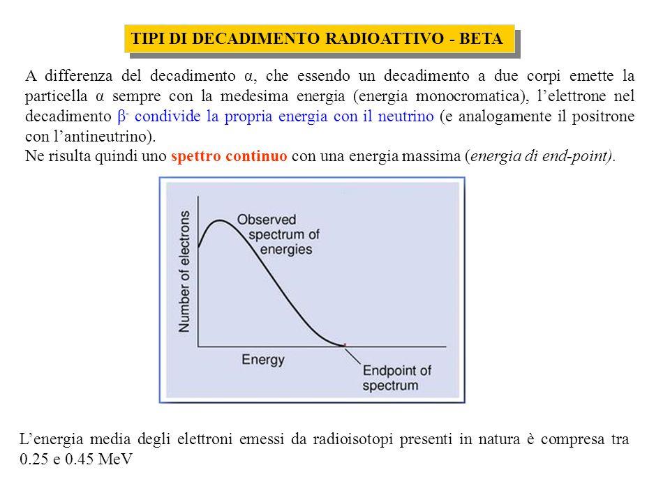 TIPI DI DECADIMENTO RADIOATTIVO - BETA A differenza del decadimento α, che essendo un decadimento a due corpi emette la particella α sempre con la medesima energia (energia monocromatica), lelettrone nel decadimento β - condivide la propria energia con il neutrino (e analogamente il positrone con lantineutrino).