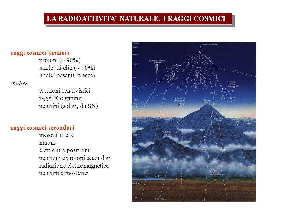 LA RADIOATTIVITA NATURALE: I RAGGI COSMICI raggi cosmici primari protoni (~ 90%) nuclei di elio (~ 10%) nuclei pesanti (tracce) inoltre elettroni relativistici raggi X e gamma neutrini (solari, da SN) raggi cosmici secondari mesoni π e k muoni elettroni e positroni neutroni e protoni secondari radiazione elettromagnetica neutrini atmosferici