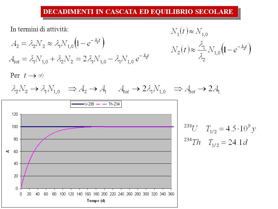 DECADIMENTI IN CASCATA ED EQUILIBRIO SECOLARE Quindi, nel caso-limite in cui il radionuclide padre ha una vita media molto più lunga del radionuclide figlio ( 1 << 2), dopo un certo tempo si raggiunge uno stato che viene chiamato di equilibrio secolare: le attività di padre e figlio diventano uguali:A 2 =A 1 In generale, se in una serie radioattiva del tipo X 1 X 2 X 3 …… X N risulta ad un certo punto della catena: i << i+1, i+2, … N-1 allora si avrà che per tutti i nuclei che seguono li-esimo decadimento vale la relazione: A i (t) = A i+1 (t ) = …..