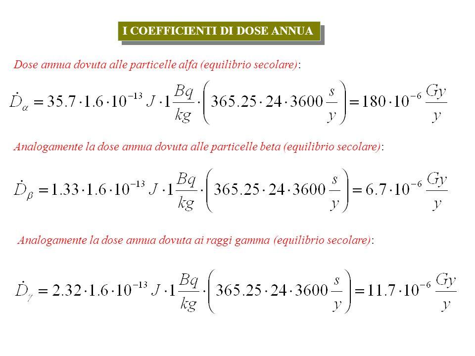 I COEFFICIENTI DI DOSE ANNUA Dose annua dovuta alle particelle alfa (equilibrio secolare): Analogamente la dose annua dovuta alle particelle beta (equilibrio secolare): Analogamente la dose annua dovuta ai raggi gamma (equilibrio secolare):