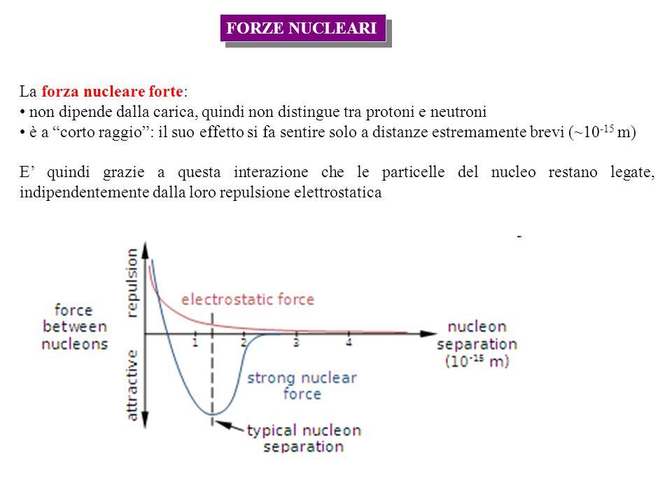 FORZE NUCLEARI La forza nucleare forte: non dipende dalla carica, quindi non distingue tra protoni e neutroni è a corto raggio: il suo effetto si fa sentire solo a distanze estremamente brevi (~10 -15 m) E quindi grazie a questa interazione che le particelle del nucleo restano legate, indipendentemente dalla loro repulsione elettrostatica