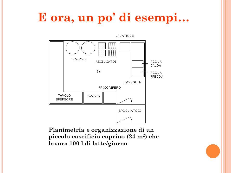 Planimetria e organizzazione di un piccolo caseificio caprino (24 m 2 ) che lavora 100 l di latte/giorno E ora, un po di esempi…