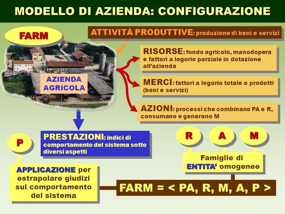 MODELLO DI AZIENDA: CONFIGURAZIONE RISORSE : fondo agricolo, manodopera e fattori a logorio parziale in dotazione allazienda AZIONI : processi che com