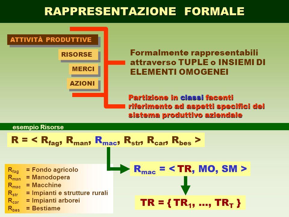 R fag =Fondo agricolo R man =Manodopera R mac =Macchine R str =Impianti e strutture rurali R car =Impianti arborei R bes =Bestiame RAPPRESENTAZIONE FO