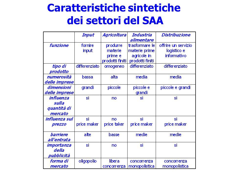 Caratteristiche sintetiche dei settori del SAA