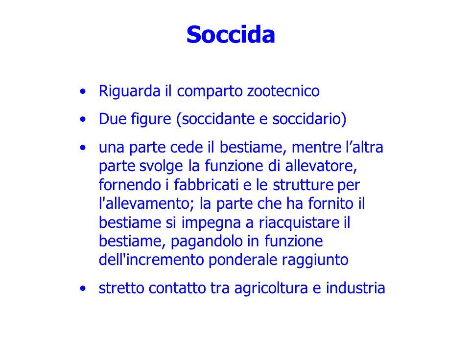 Soccida Riguarda il comparto zootecnico Due figure (soccidante e soccidario) una parte cede il bestiame, mentre laltra parte svolge la funzione di all