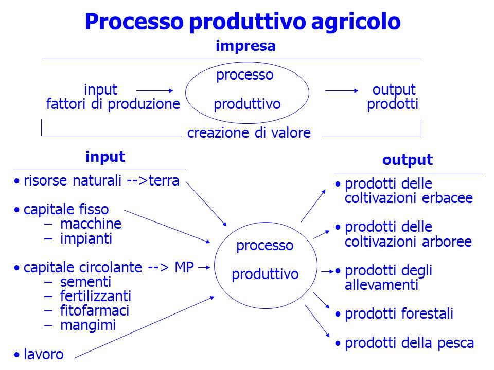 Processo produttivo agricolo impresa processo input output fattori di produzione produttivo prodotti creazione di valore input risorse naturali -->ter