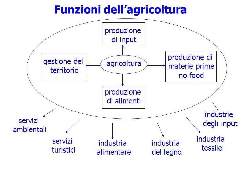 Funzioni dellagricoltura agricoltura gestione del territorio produzione di input produzione di materie prime no food produzione di alimenti industria