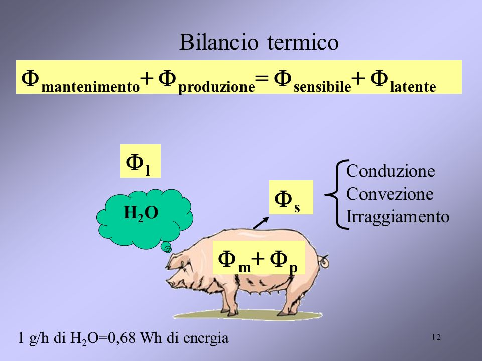 12 Bilancio termico m + p s l H2OH2O Conduzione Convezione Irraggiamento mantenimento + produzione = sensibile + latente 1 g/h di H 2 O=0,68 Wh di ene