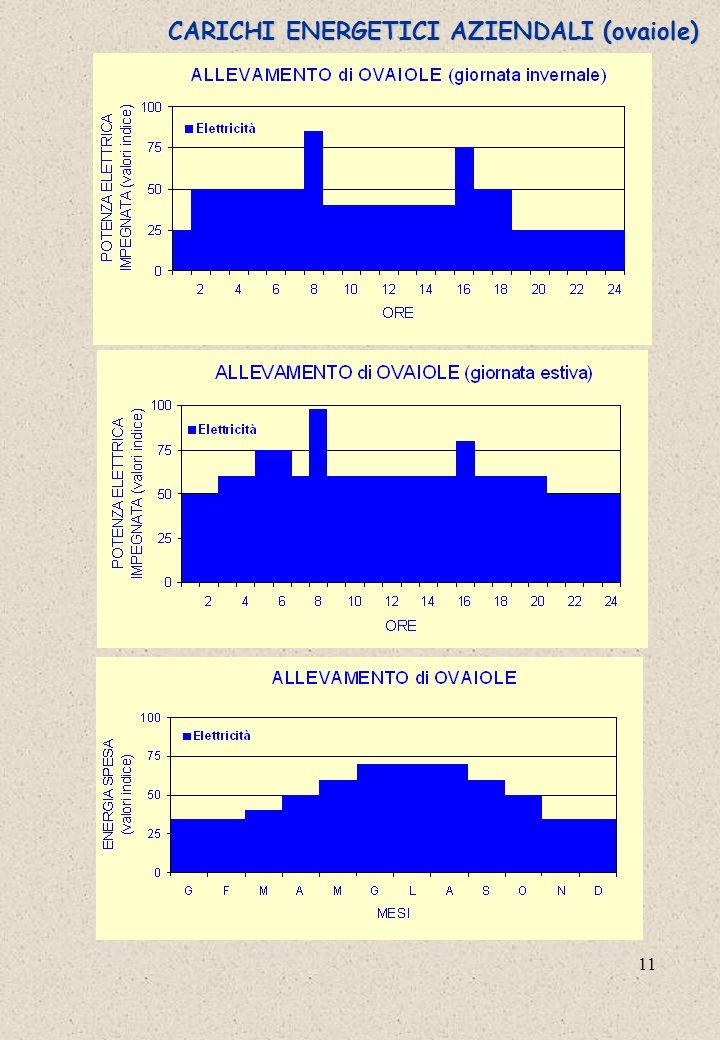 11 CARICHI ENERGETICI AZIENDALI (ovaiole)