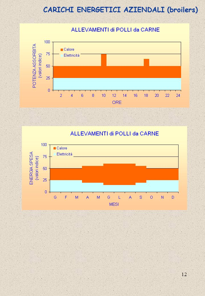 12 CARICHI ENERGETICI AZIENDALI (broilers)