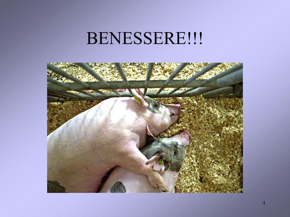 4 BENESSERE!!!