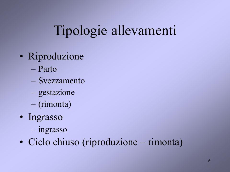 6 Tipologie allevamenti Riproduzione –Parto –Svezzamento –gestazione –(rimonta) Ingrasso –ingrasso Ciclo chiuso (riproduzione – rimonta)