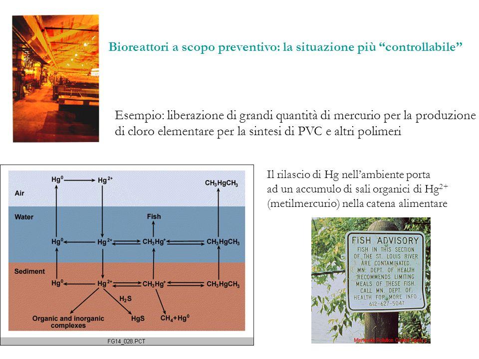 Bioreattori a scopo preventivo: la situazione più controllabile Esempio: liberazione di grandi quantità di mercurio per la produzione di cloro element