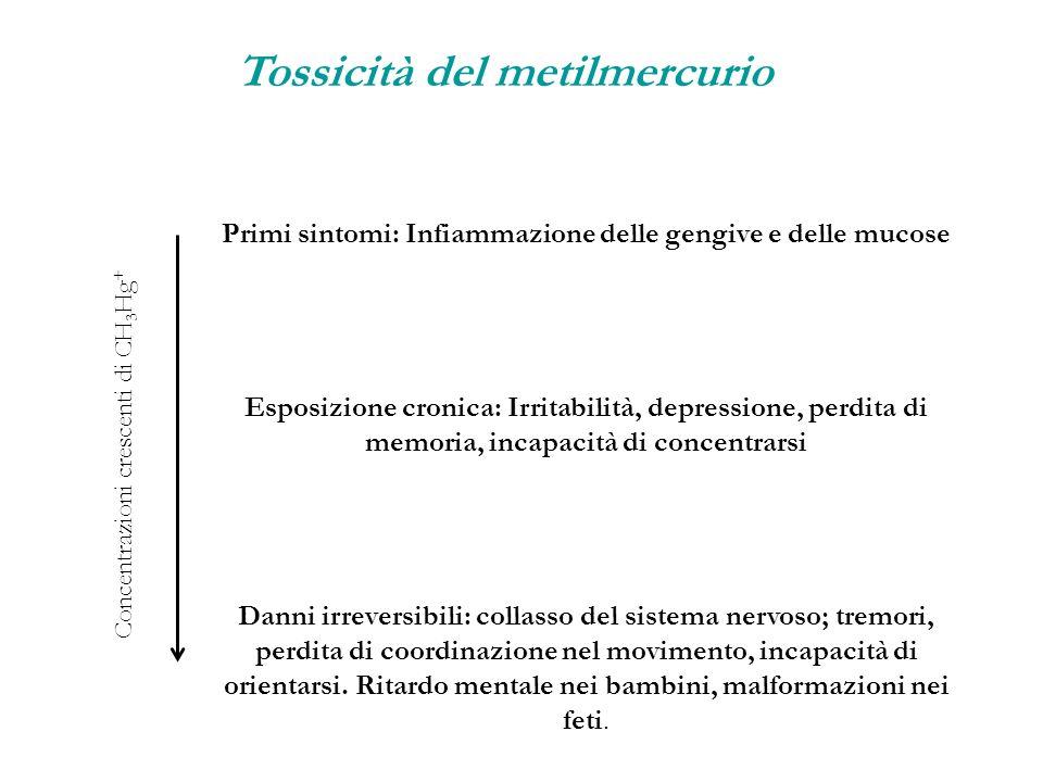 Primi sintomi: Infiammazione delle gengive e delle mucose Esposizione cronica: Irritabilità, depressione, perdita di memoria, incapacità di concentrar