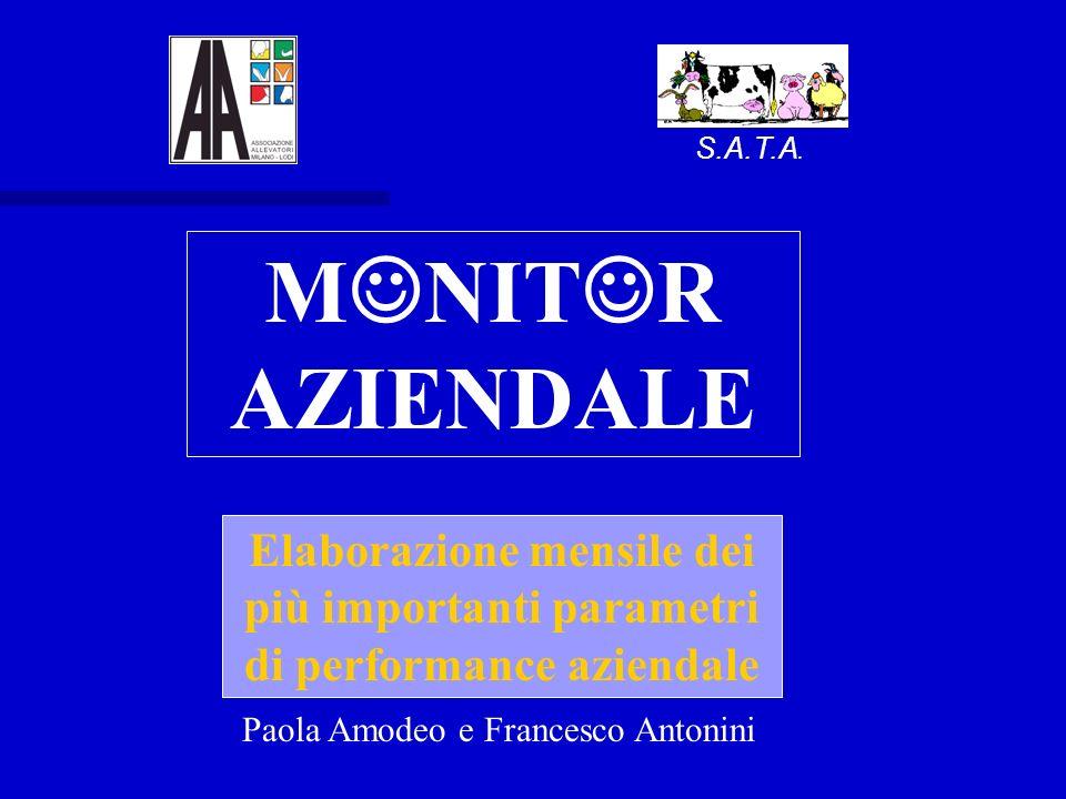 S.A.T.A. M NIT R AZIENDALE Elaborazione mensile dei più importanti parametri di performance aziendale Paola Amodeo e Francesco Antonini