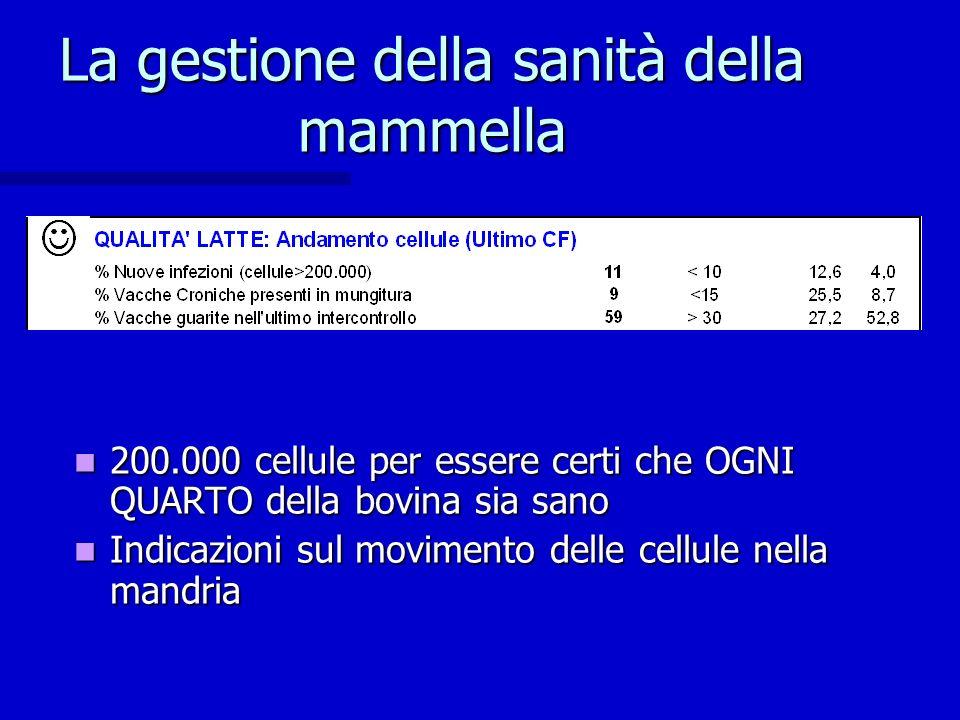 La gestione della sanità della mammella 200.000 cellule per essere certi che OGNI QUARTO della bovina sia sano 200.000 cellule per essere certi che OG