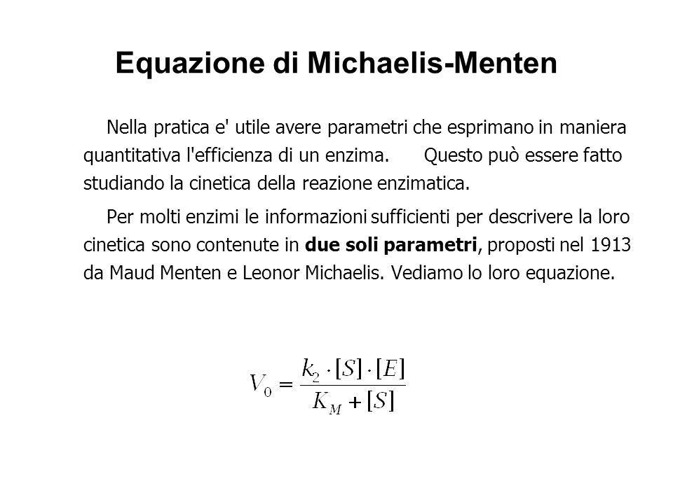 Equazione di Michaelis-Menten Nella pratica e' utile avere parametri che esprimano in maniera quantitativa l'efficienza di un enzima. Questo può esser