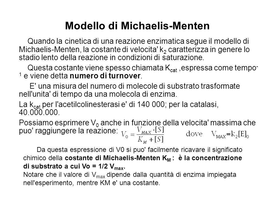 Modello di Michaelis-Menten Quando la cinetica di una reazione enzimatica segue il modello di Michaelis-Menten, la costante di velocita' k 2 caratteri