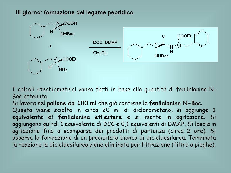 III giorno: formazione del legame peptidico I calcoli stechiometrici vanno fatti in base alla quantità di fenilalanina N- Boc ottenuta. Si lavora nel