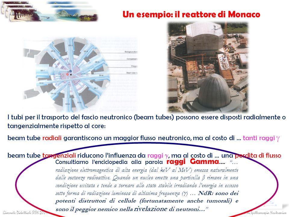 Società Italiana di Spettroscopia NeutronicaGiornate Didattiche SISN 2009 I tubi per il trasporto del fascio neutronico (beam tubes) possono essere di