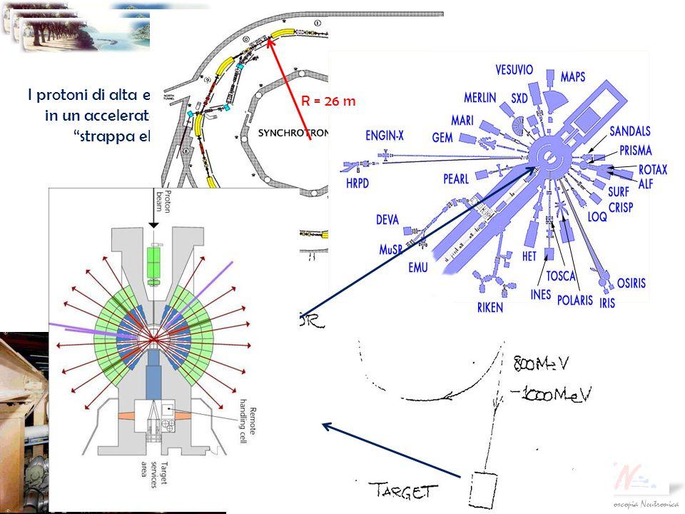 Società Italiana di Spettroscopia NeutronicaGiornate Didattiche SISN 2009 Sorgenti di neutroni Sorgenti a spallazione I protoni di alta energia vengon