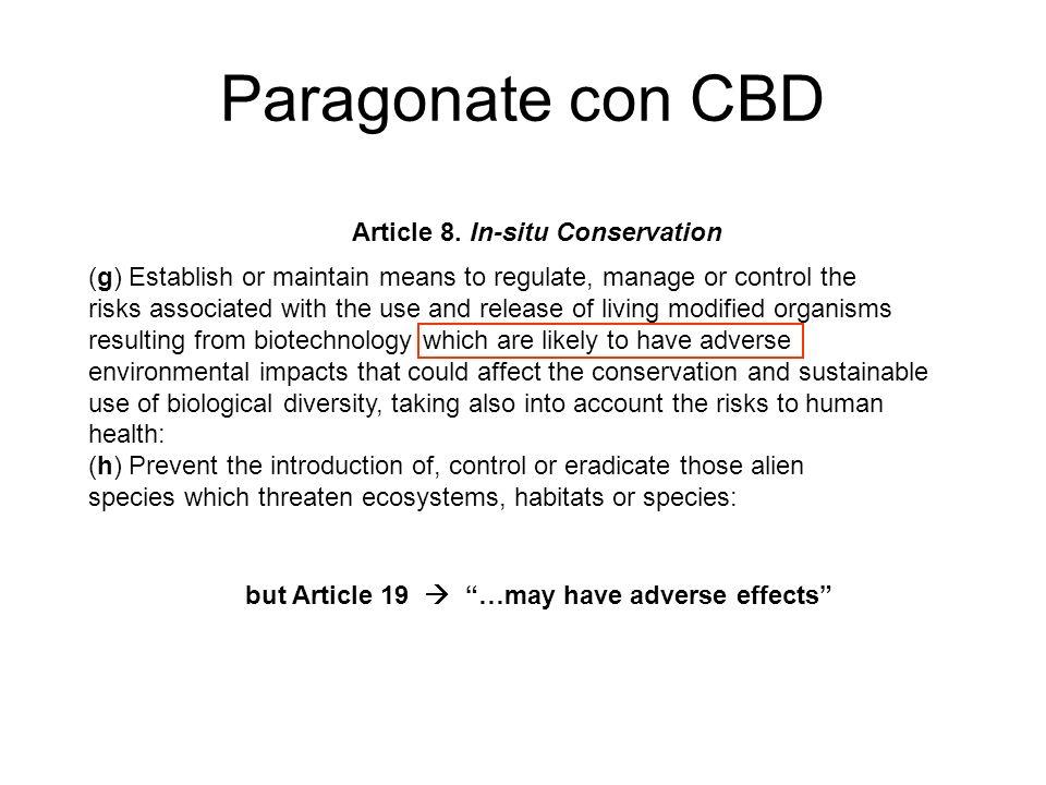 Paragonate con CBD Article 8.