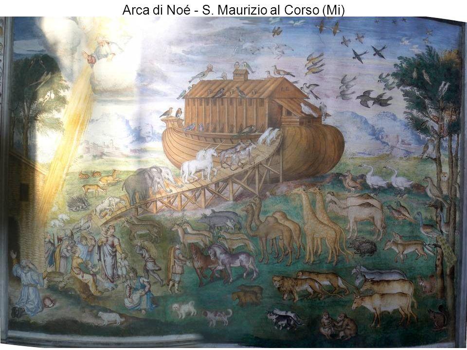 Arca di Noé - S. Maurizio al Corso (Mi)