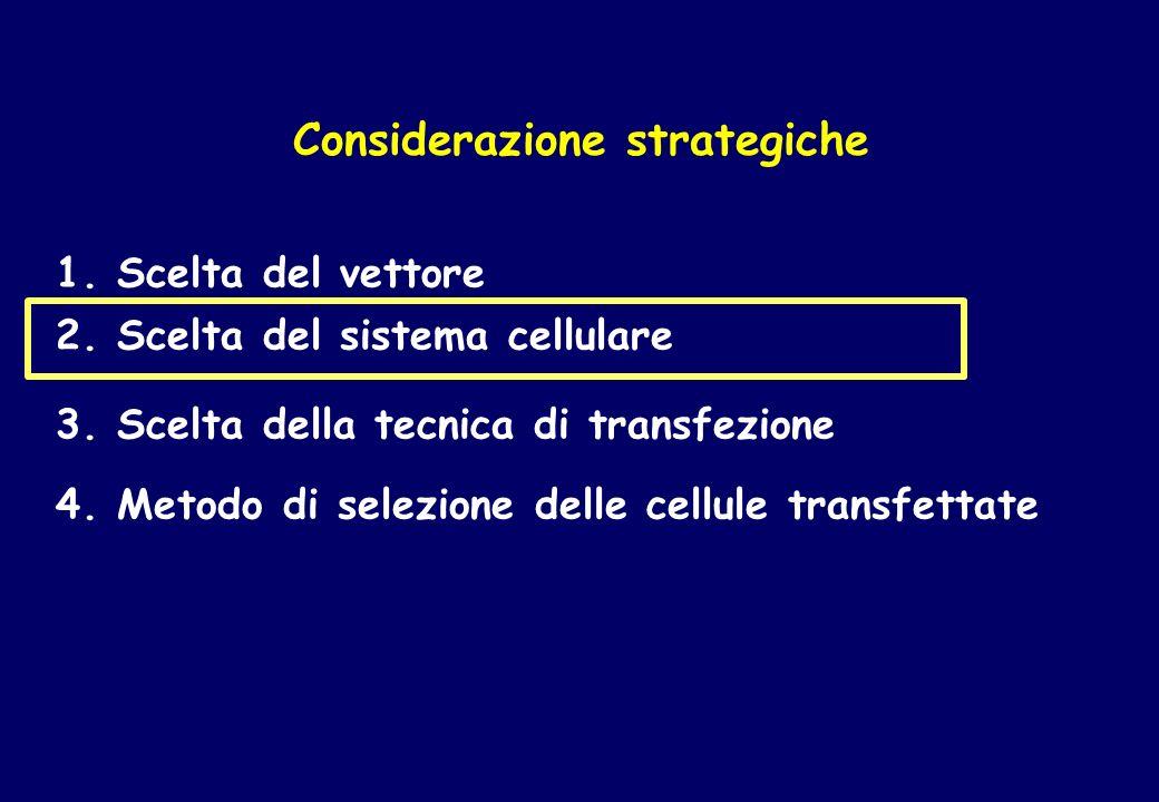 Considerazione strategiche 2. Scelta del sistema cellulare 3. Scelta della tecnica di transfezione 4. Metodo di selezione delle cellule transfettate 1