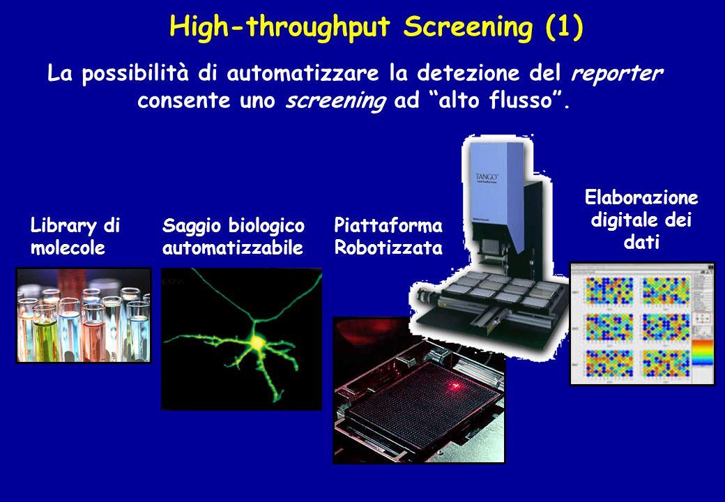 High-throughput Screening (1) La possibilità di automatizzare la detezione del reporter consente uno screening ad alto flusso. Library di molecole Sag