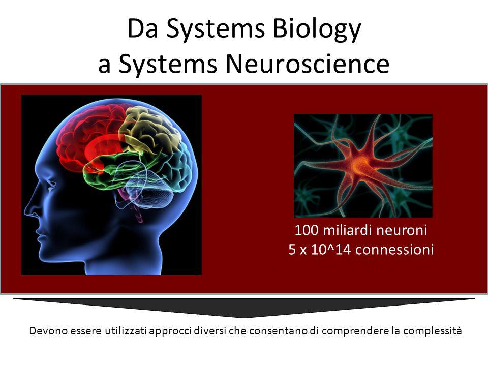 Da Systems Biology a Systems Neuroscience 100 miliardi neuroni 5 x 10^14 connessioni Devono essere utilizzati approcci diversi che consentano di compr