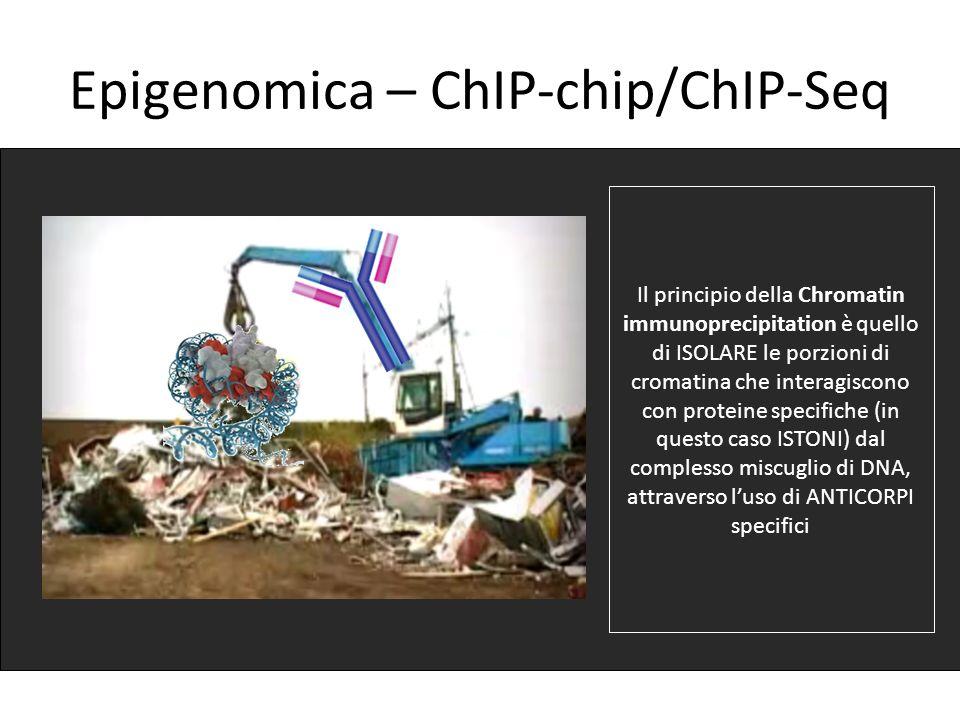 Epigenomica – ChIP-chip/ChIP-Seq Il principio della Chromatin immunoprecipitation è quello di ISOLARE le porzioni di cromatina che interagiscono con p