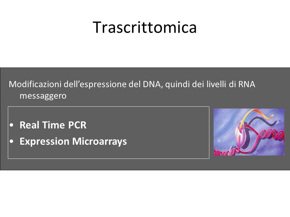 Trascrittomica Modificazioni dellespressione del DNA, quindi dei livelli di RNA messaggero Real Time PCR Expression Microarrays
