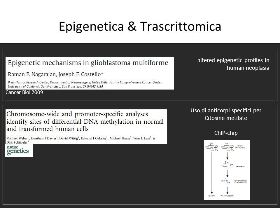 Epigenetica & Trascrittomica altered epigenetic proles in human neoplasia Uso di anticorpi specifici per Citosine metilate ChIP-chip Cancer Biol 2009