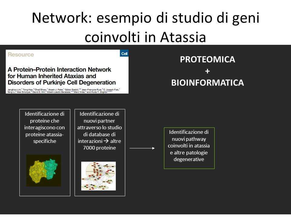 Network: esempio di studio di geni coinvolti in Atassia PROTEOMICA + BIOINFORMATICA Identificazione di proteine che interagiscono con proteine atassia
