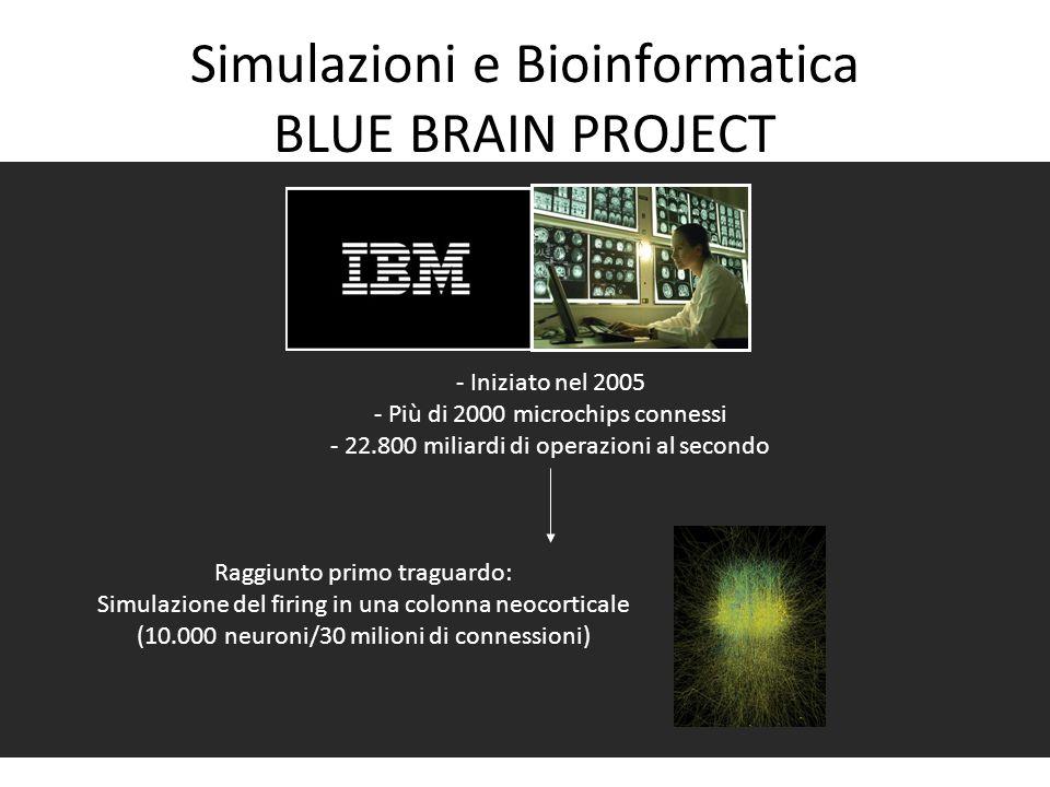 Simulazioni e Bioinformatica BLUE BRAIN PROJECT - Iniziato nel 2005 - Più di 2000 microchips connessi - 22.800 miliardi di operazioni al secondo Raggi