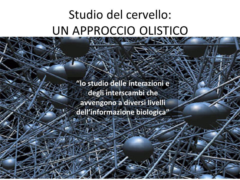 Studio del cervello: UN APPROCCIO OLISTICO lo studio delle interazioni e degli interscambi che avvengono a diversi livelli dellinformazione biologica
