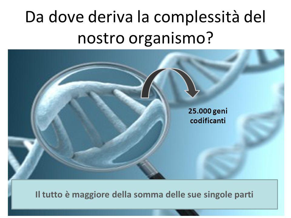 Da dove deriva la complessità del nostro organismo? 25.000 geni codificanti Il tutto è maggiore della somma delle sue singole parti