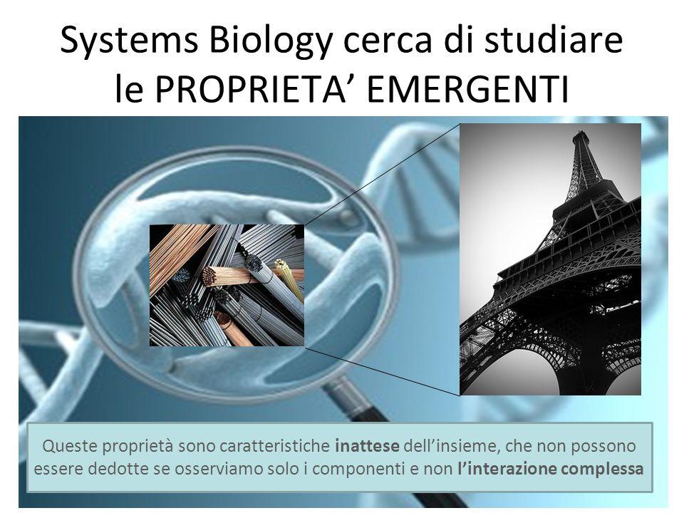 Systems Biology cerca di studiare le PROPRIETA EMERGENTI Queste proprietà sono caratteristiche inattese dellinsieme, che non possono essere dedotte se