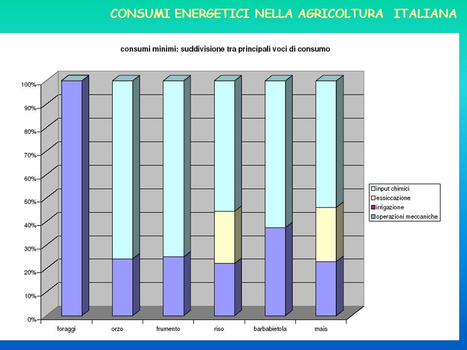Dellessiccazione si è già detto CONSUMI ENERGETICI NELLA AGRICOLTURA ITALIANA